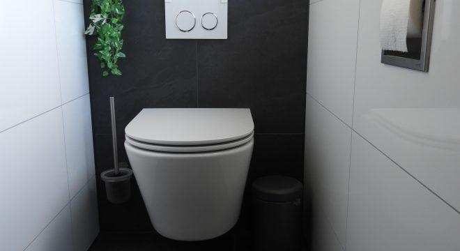 Rimfree wandcloset badkamer